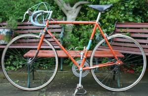 1954 Stella 038